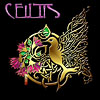 CEILTIS - Recordings representing over 20 years of great music at The Celtic Arts Center!